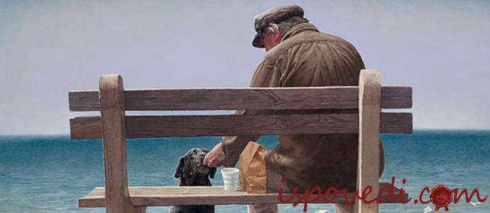 История одинокого старика