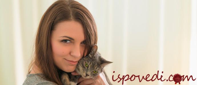 девушка с серым котом