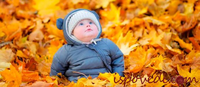 ребенок сидит в осенних листьях