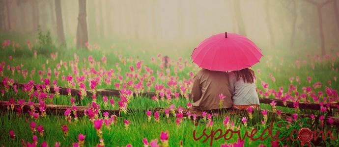 пара отдыхает среди цветов
