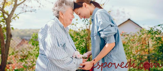 выбор пансионата для пожилых людей