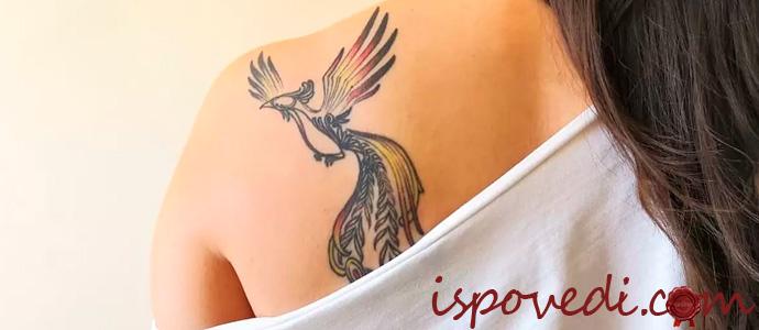 парень запрещает делать татуировку на теле