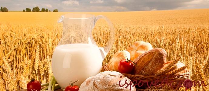 натуральные фермерские продукты