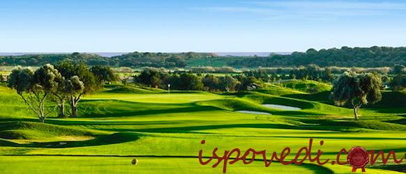 Типичный пейзаж в Португалии