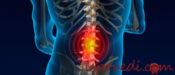Причины постоянной боли в спине