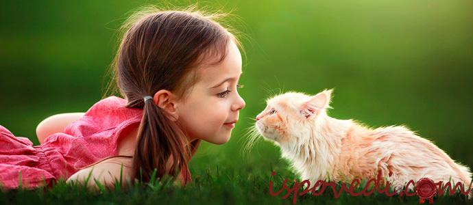 исповедь девочки о спасенном котенке