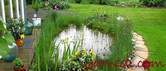 Маленький пруд в загородном доме